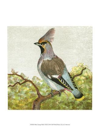 Mini Vintage Birds VIII