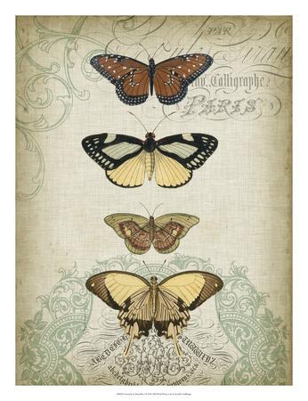 Cartouche & Butterflies I