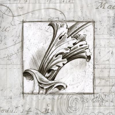Embellished Acanthus Detail I
