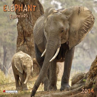 Elephant Families - 2014 Calendar