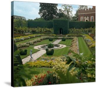 Somptuous Garden VII
