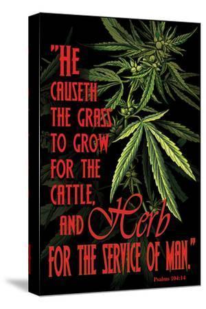 Psalms 104