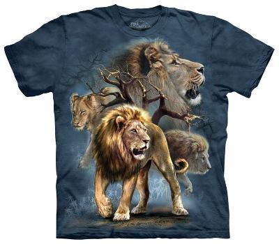 Lion Collage
