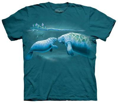 Youth: Year Of Manatee