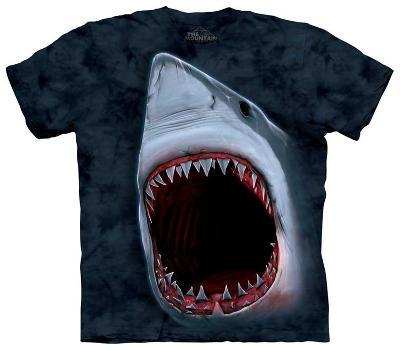 Youth: Shark Bite