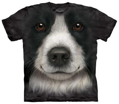 Youth: Border Collie Face