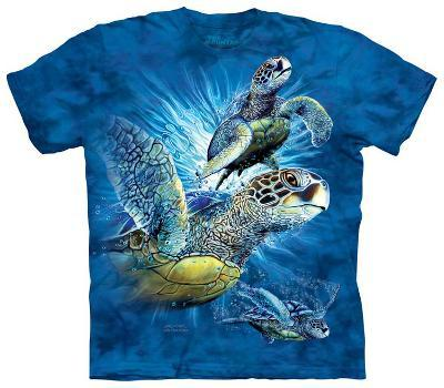 Youth: Find 9 Sea Turtles