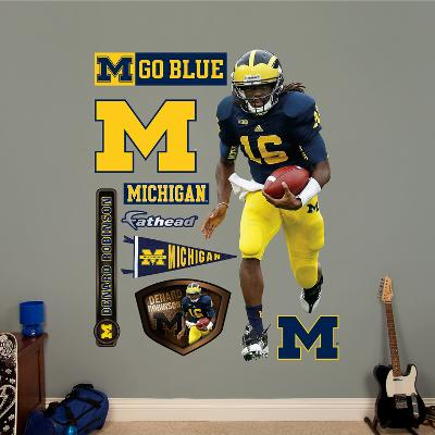 NCAA Denard Robinson Michigan Wolverines 2013 Wall Decal Sticker