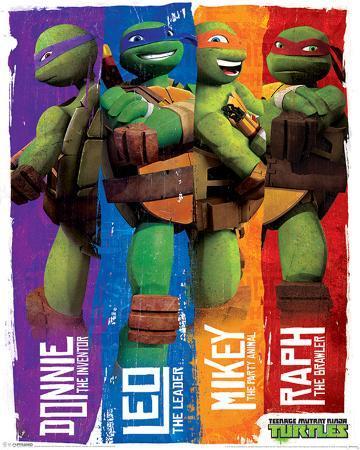 Turtles (Profiles)