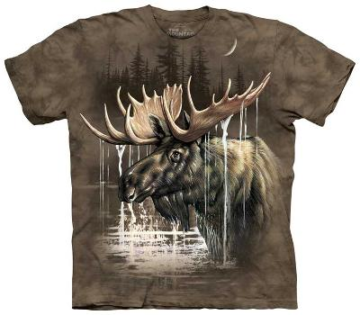 Moose Forest