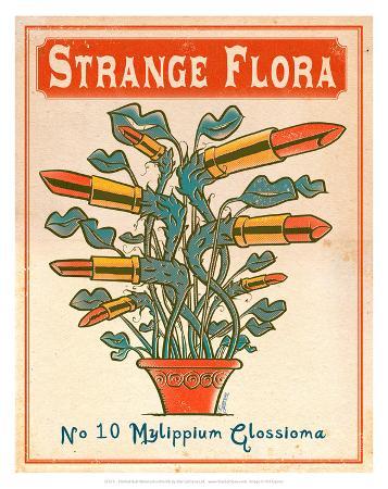 No.10 Mylippium Glossioma