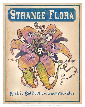 No.12 Ballfootium Backstickalus