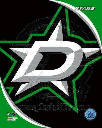 Dallas Stars 2013 Team Logo