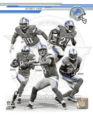 Detroit Lions 2013 Team Composite