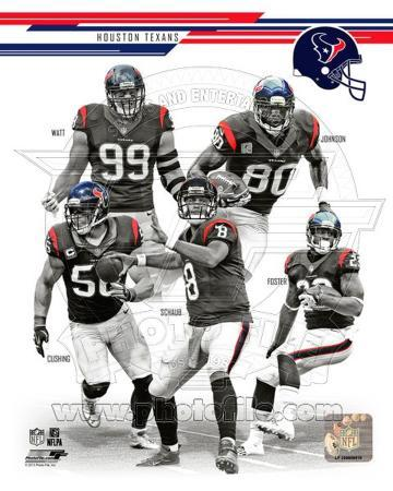 Houston Texans 2013 Team Composite