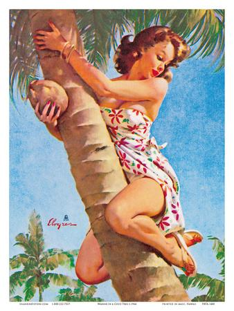 Pick of the Crop (Up a Tree) - Hawaiian Pin Up Girl