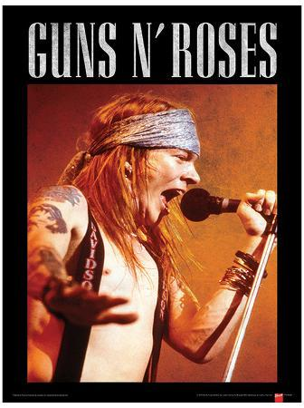 Guns N Roses (Axl) Music Poster