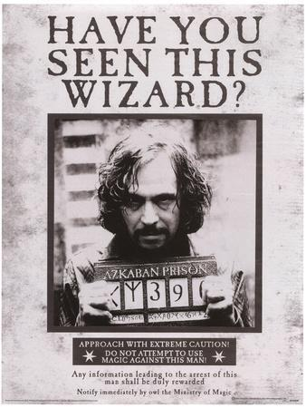 Harry Potter (Sirius Wanted) Movie Poster