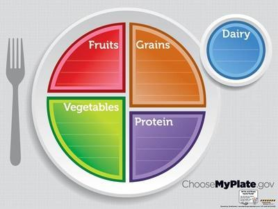 MyPlate Dry Erase Laminated Educational Menu Poster