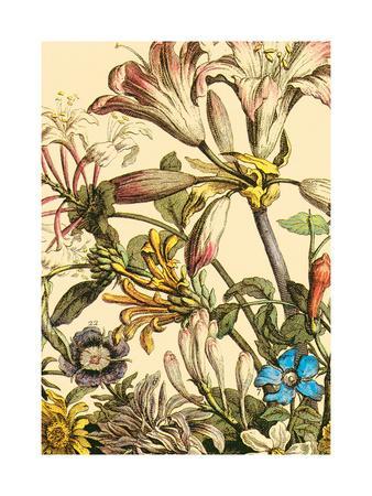 Furber Flowers III - Detail