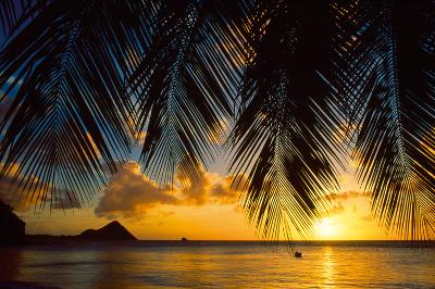 Island Evening I