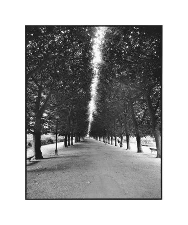 Forêt Longue