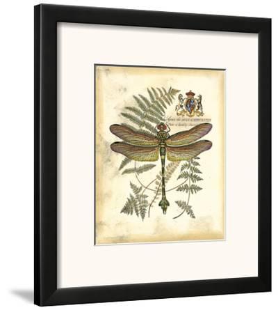 Regal Dragonfly III