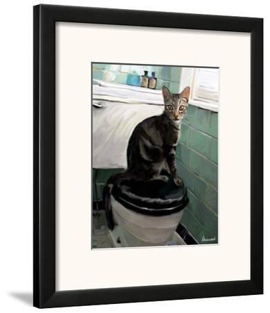 Gray Tiger Cat on the Toilet