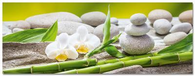 Soft Green Balance