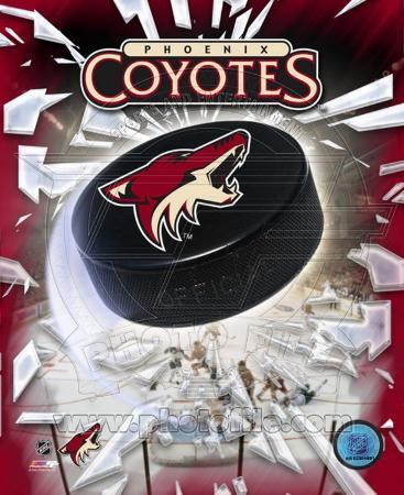 Phoenix Coyotes 2005 - Logo / Puck