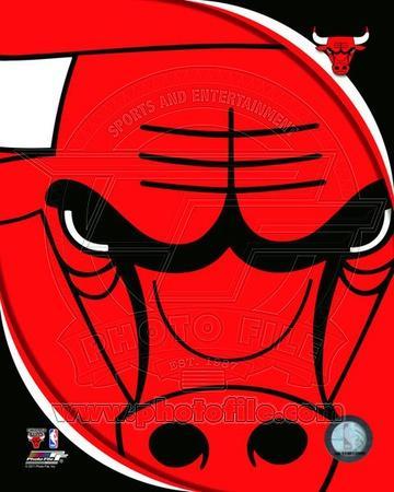 Chicago Bulls - Chicago Bulls Team Logo