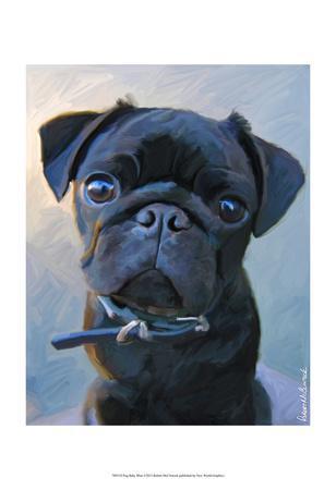 Pug Baby Blue