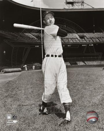 Detroit Tigers - Al Kaline Photo
