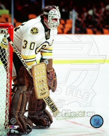 Boston Bruins - Gerry Cheevers Photo