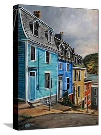 St. John's Newfoundland Houses