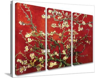 Interpretation in Red Almond Blossom 3-Piece Set