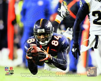 Denver Broncos - Brandon Lloyd Photo