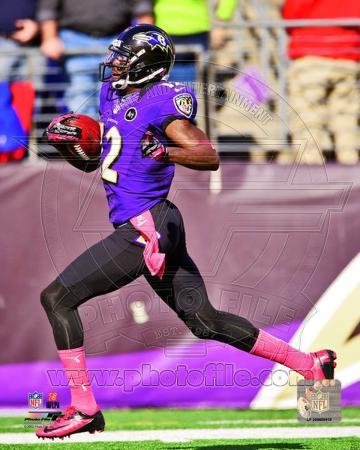 Baltimore Ravens - Jacoby Jones Photo
