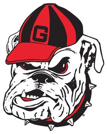 NCAA Georgia Bulldogs Mascot Vinyl Magnet