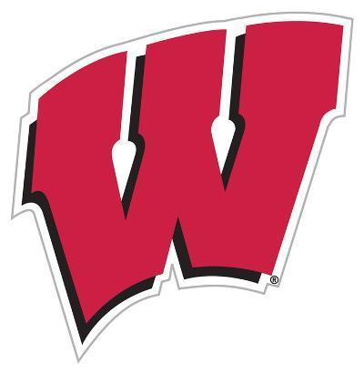 NCAA Wisconsin Badgers Vinyl Magnet