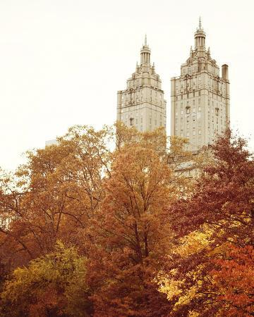 Fall in the City I