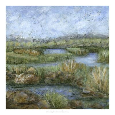 Marshland IV