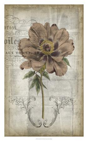 French Floral II