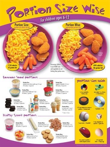 kids portion size poster ages 612 posters at allposterscom