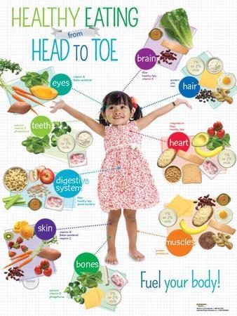 Preschool Healthy Eating Head to Toe Poster