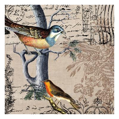 Postcard Birds 1