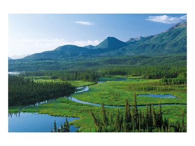 Tok Cut Alaska