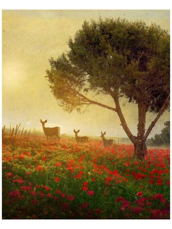 Trees, Poppies and Deer II