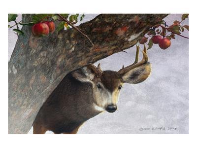 Apple Deer