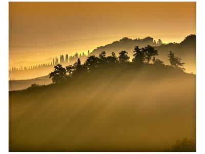 Tuscan Silhouette Landscape